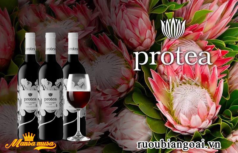 Vang Protea Cabernet Sauvignon 2015