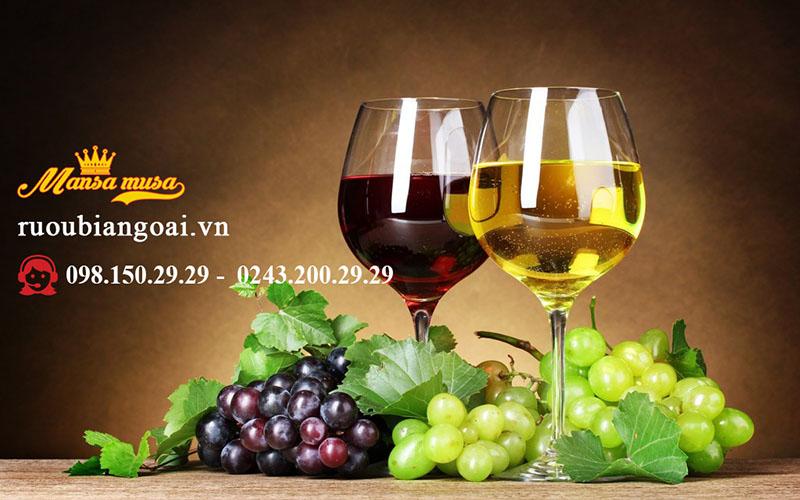 giống nho để sản xuất rượu vang