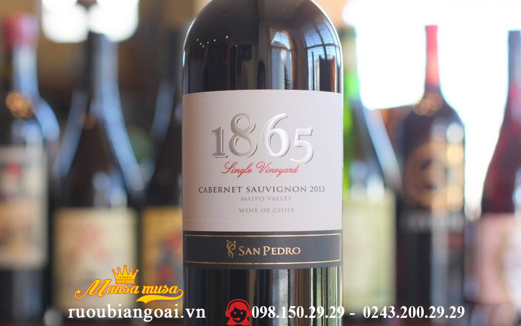 Vang 1865 Single Vineyard Cabernet Sauvignon