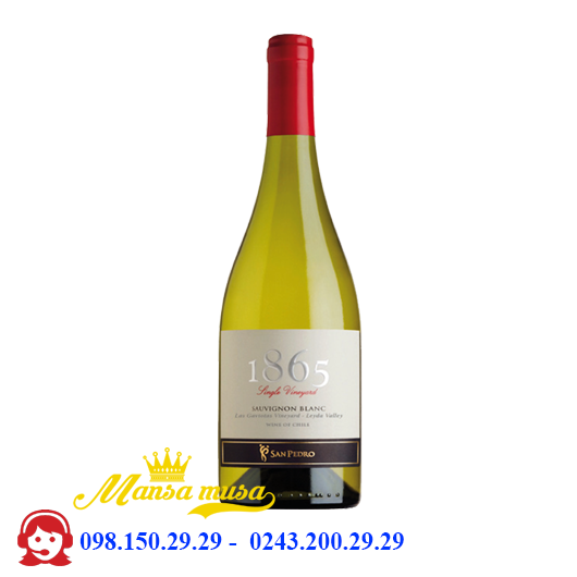 Vang 1865 Single Vineyard Sauvignon Blanc