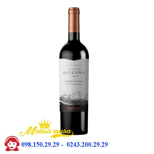 Vang Castillo De Molina Cabernet Sauvignon