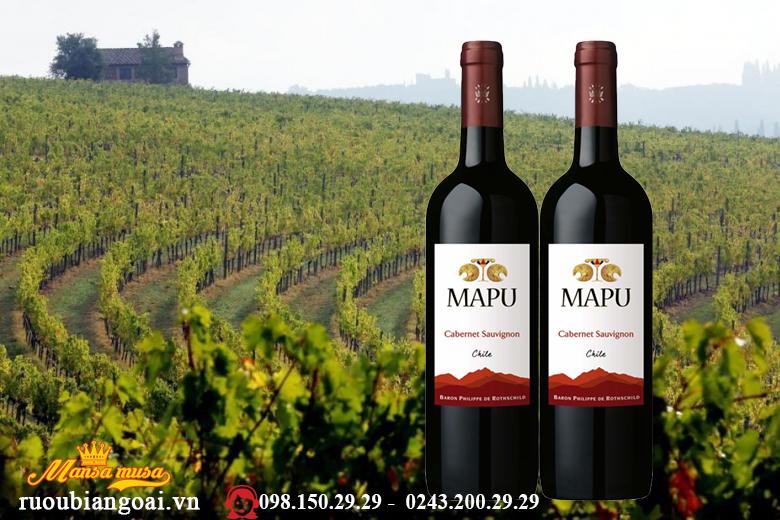 rượu vang chile mapu cabernet sauvignon