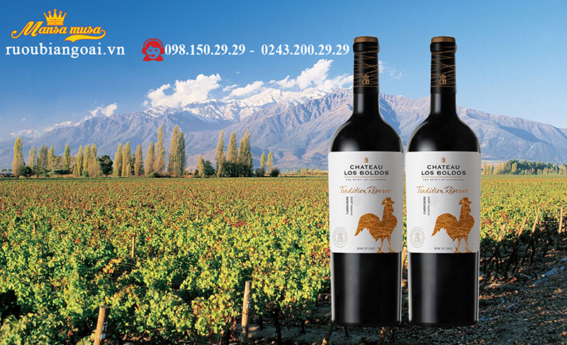 vang chile los boldos tradition reserve camenere