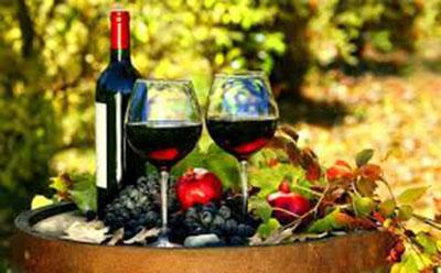 Rượu vang Pháp nhập khẩu chính hãng