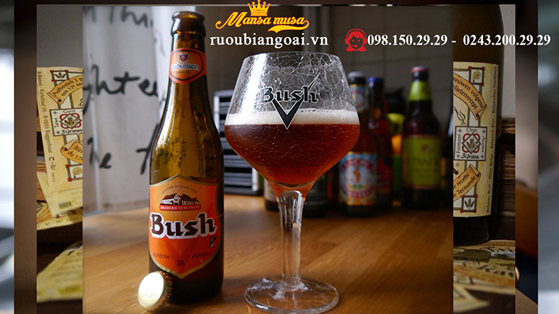 Bia bush amber tripe dòng Bia bỉ cao cấp