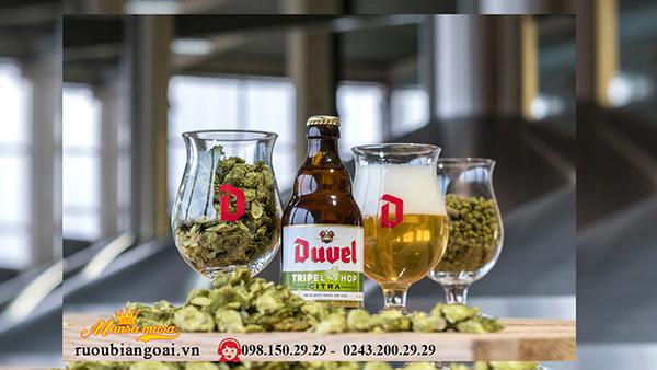 Bia Duvel dòng Bia bỉ cao cấp