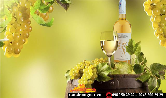 Rượu Vang Ý Chardonnay Bianco Salento