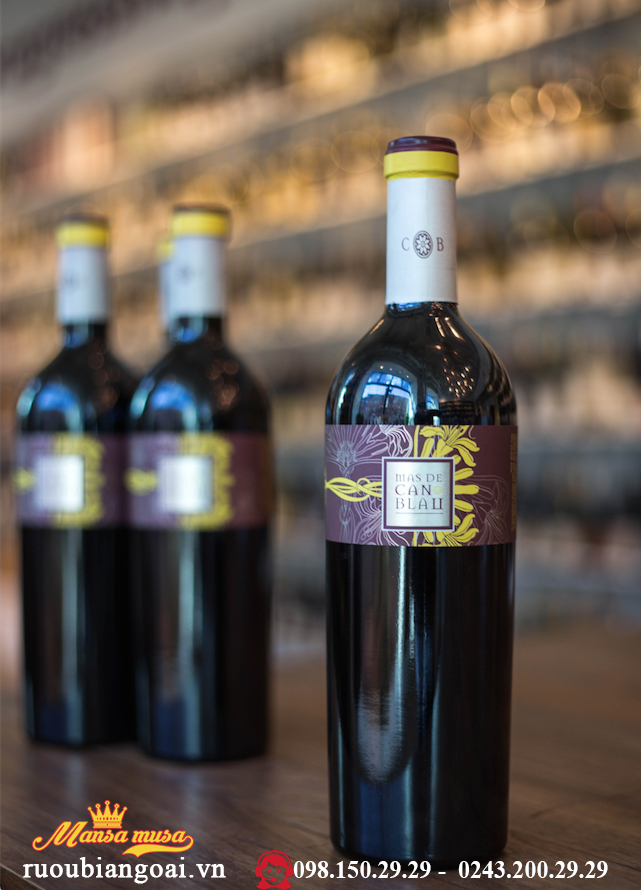 Rượu Vang Tây Ban Nha Mas De Can Blau 2013