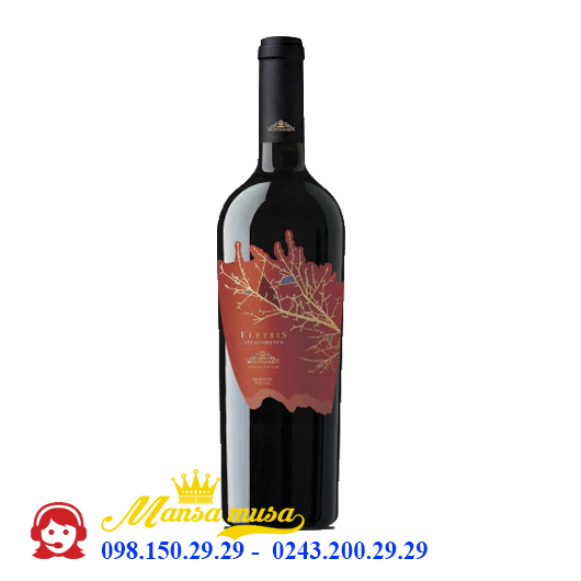 Vang Ý Montemajor Fletris Appassimento Primitivo Double Oak 2017
