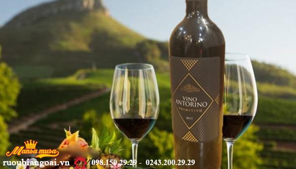 Vang Vino Antorino Primitivo- Rượu Vang Ý