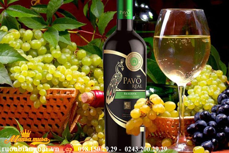 Vang Chile Pavo Real Sauvignon Blanc Reserva