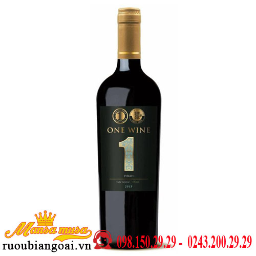 Vang Chile One Wine Syrah